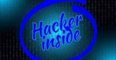 Computer virus, keylogger, trojan horse